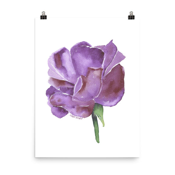 Purple Rose Watercolor