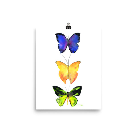 Three Butterflies Watercolor