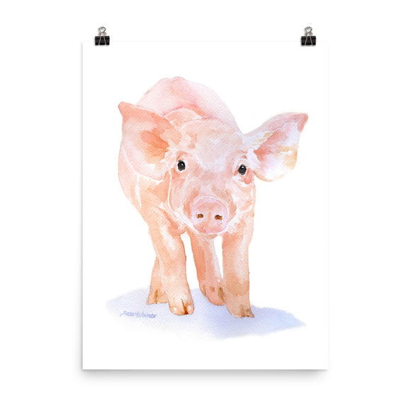 Pig Watercolor