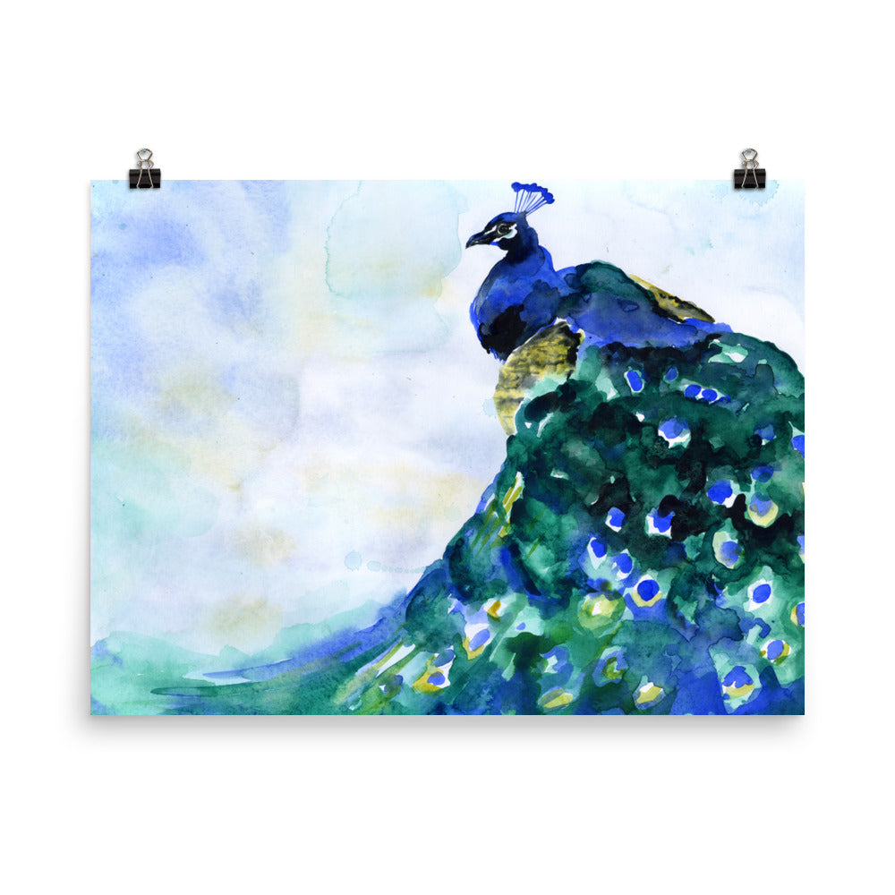 Peacock 1 Watercolor