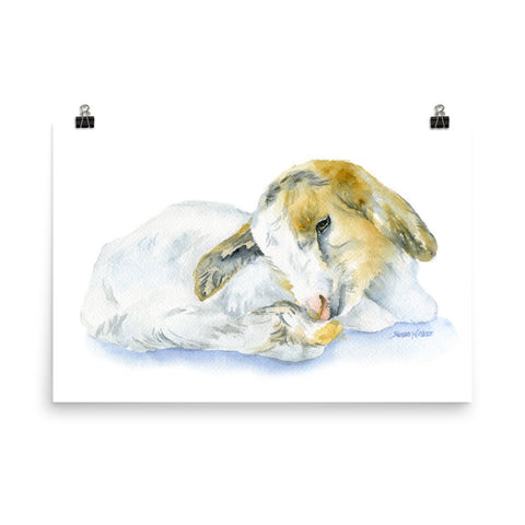 Goat Lying Down Watercolor