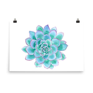 Teal Succulent Watercolor
