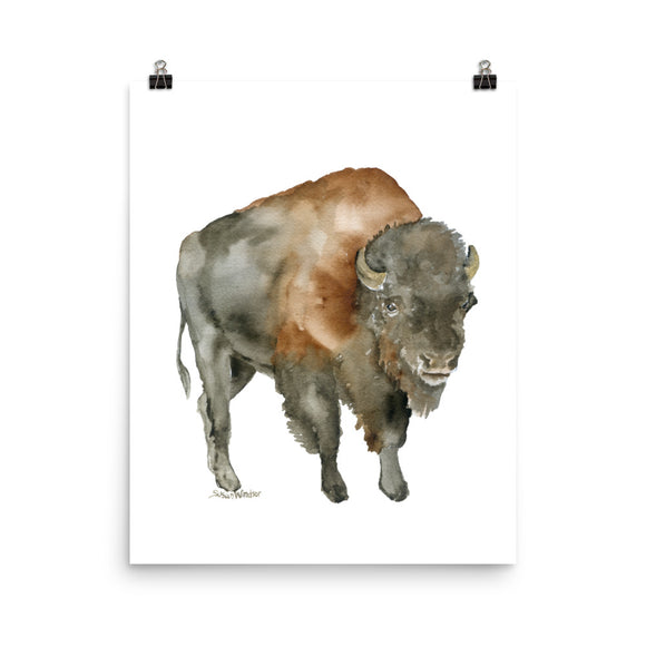 Bison 2 Watercolor