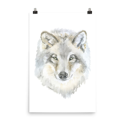 Gray Wolf Watercolor