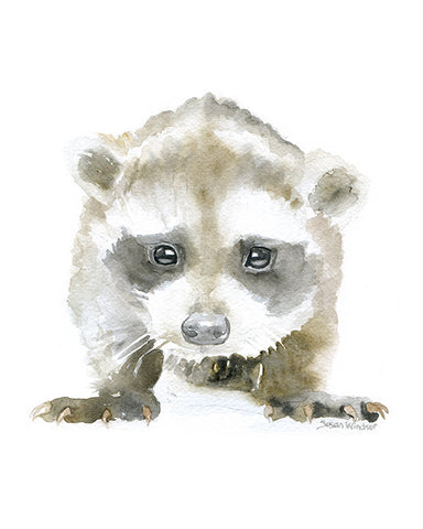 Baby Raccoon Original Watercolor Painting