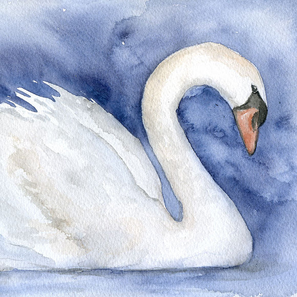Swan Original Watercolor Painting
