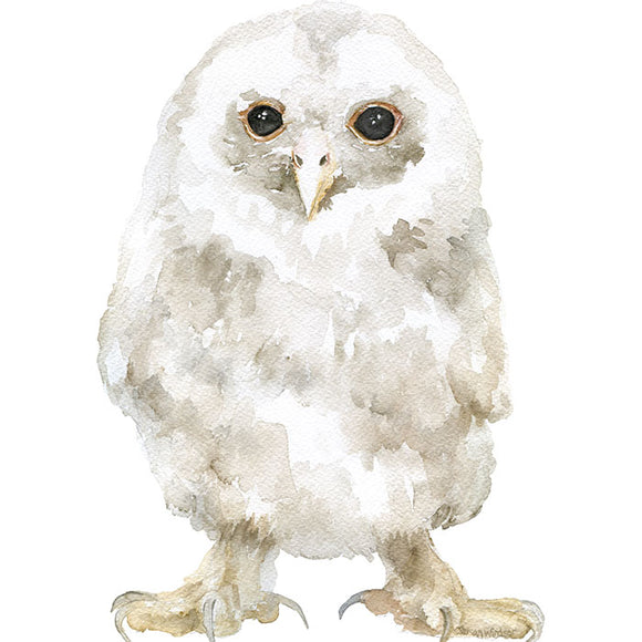 Tawny Owl Original Watercolor Painting