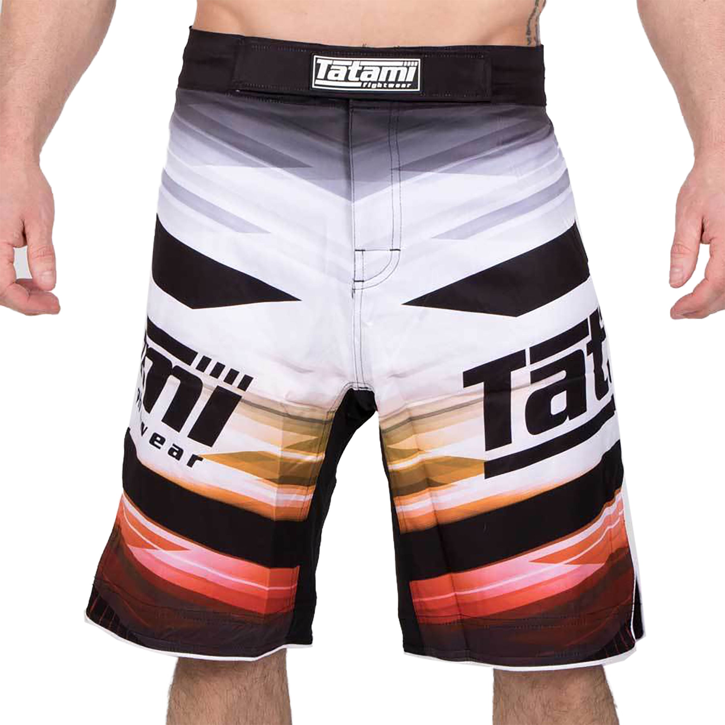 Image of Tatami Collision Standard Fit Shorts