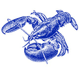 Lobster Decal - Chatham Pottery