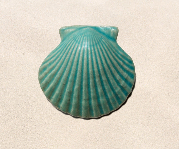 Shell Paperweights - Caribbean Blue