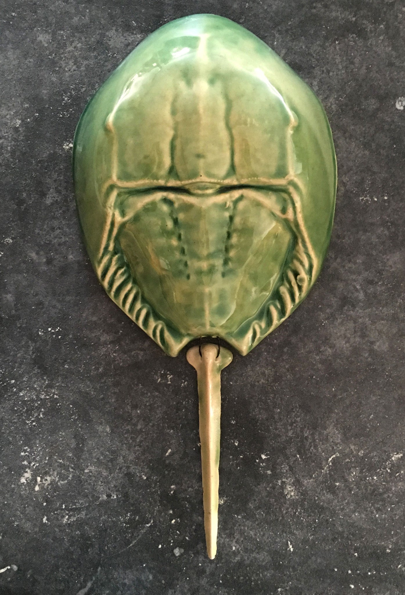 Horseshoe Crab - Sea Green