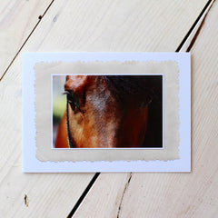 True Beauty Arabian Horse Note Cards