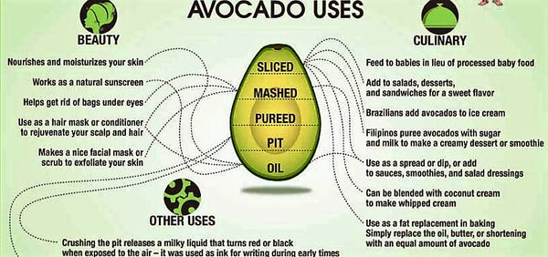 Image result for avocados have many uses