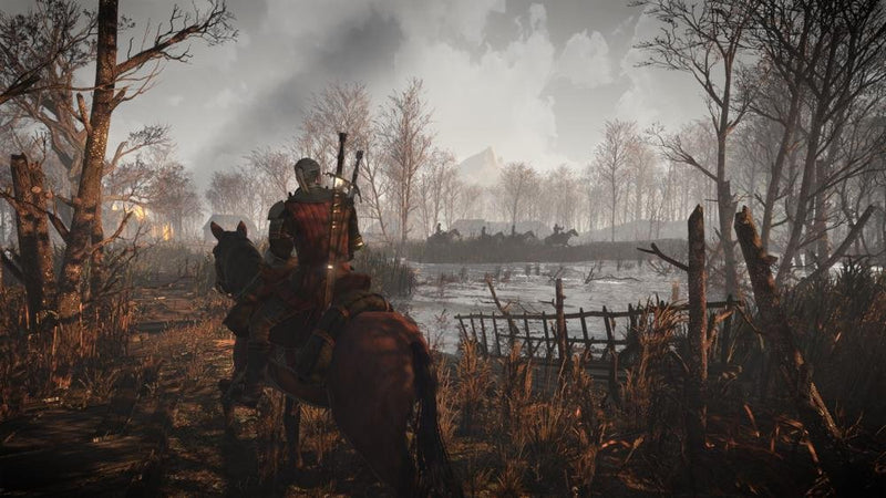 The Witcher 3: Wild Hunt (PS4) Used