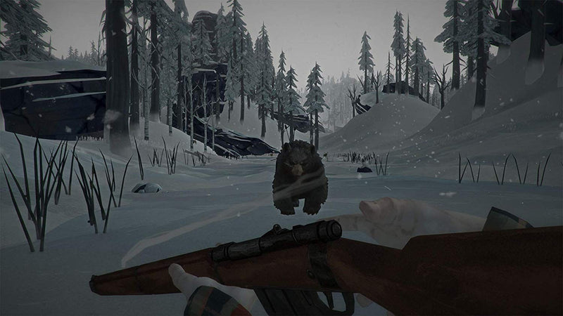 The Long Dark (PS4) Used