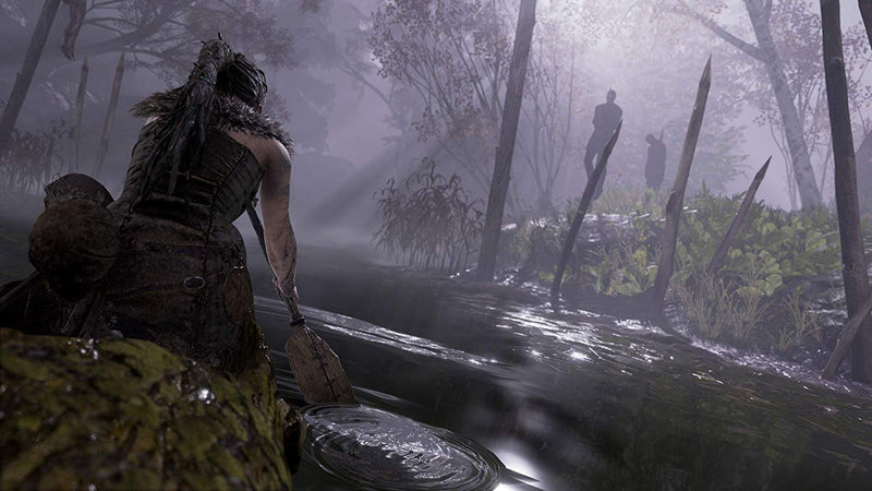 Hellblade: Senua's Sacrifice (PS4) Used