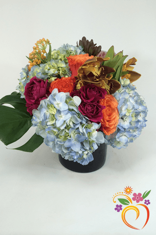 Blue Tropics Appeal - Local Delivery Only