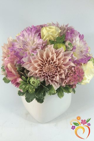 Dahlia Delight  - Local Delivery Only