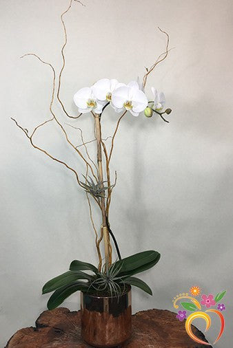 Copper Orchid Elegance