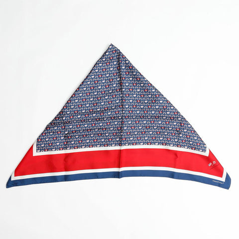 TEAM USA! Lapham Grant Vineyard Vines Scarf