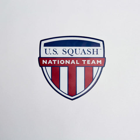 US National Teams Car Magnet