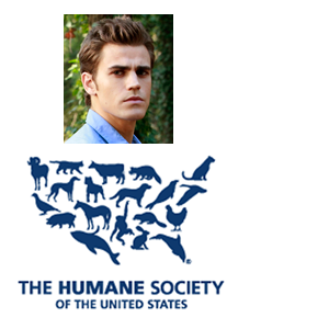 charity-humane-society.png
