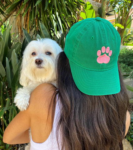 Hats for Humans and Dogs