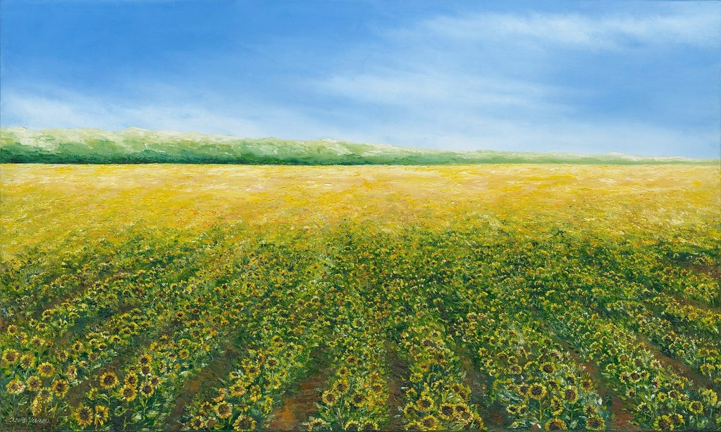 field of sunflowers oil painting on canvas