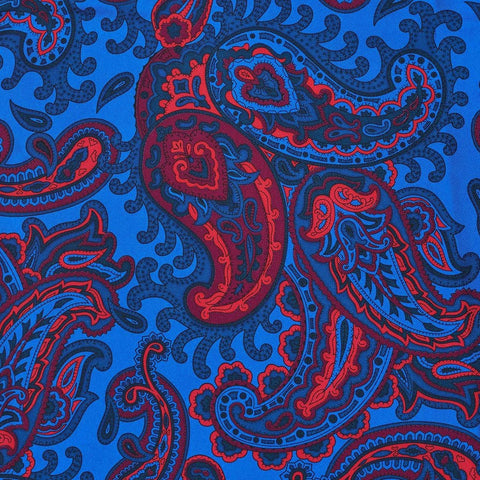 Budd Exclusive Paisley, Blue | Silk Tie | Budd Shirtmakers | Made in England