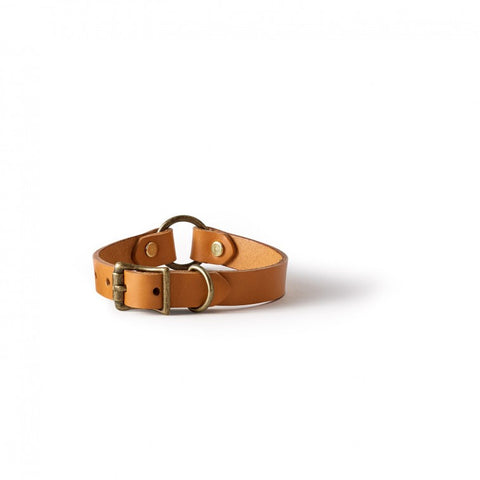 Puppy Collar | Bridle Leather | Made in America | FILSON