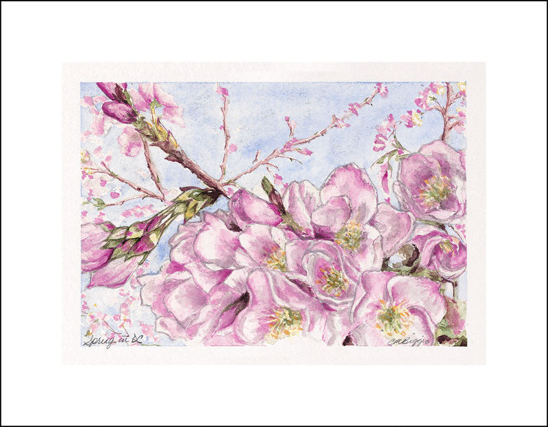 Spring in DC | Print From Watercolor | Carole Moore Biggio | 6 by 9 Inches-Print-Sterling-and-Burke