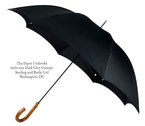 The Harry Umbrella | A Gentleman's Royal Umbrella | Malacca Handle Tube Umbrella used by Prince Harry | Matches with The Meghan Umbrella | Dark Grey Canopy | Made in England | Sterling and Burke