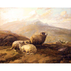 "Antique Oil Painting | Highland Sheep by Thomas Sidney Cooper | 27"" x 30.5""-Oil Painting-Sterling-and-Burke"