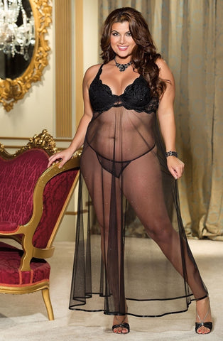 Where can you buy plus size Shirley of Hollywood lingerie?