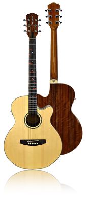 FG-629 Wireless Acoustic/Electric Guitar **FALL SPECIAL  FREE GIGBAG ** - The Fretlight Guitar Store
