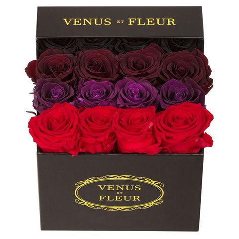 Luxury Rose Delivery The Top 4 Winter Flowers To Send To Your