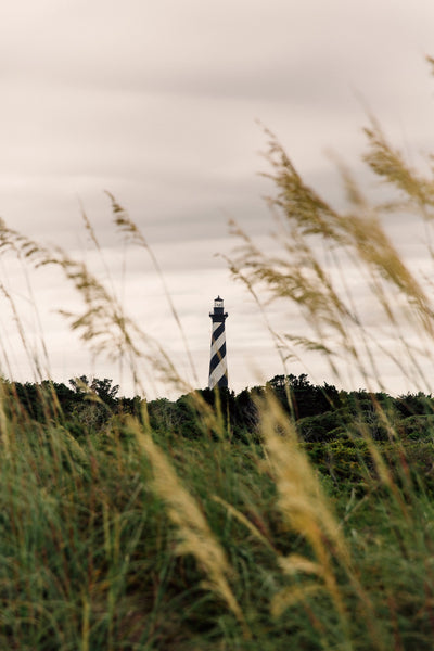 Travel Like a Local: Outer Banks, NC