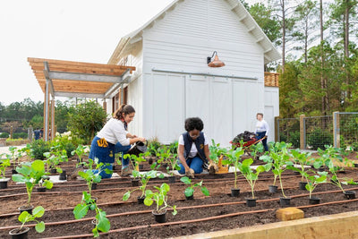Planted: SCAD & Second Harvest Are Changing The World One Meal At A Time