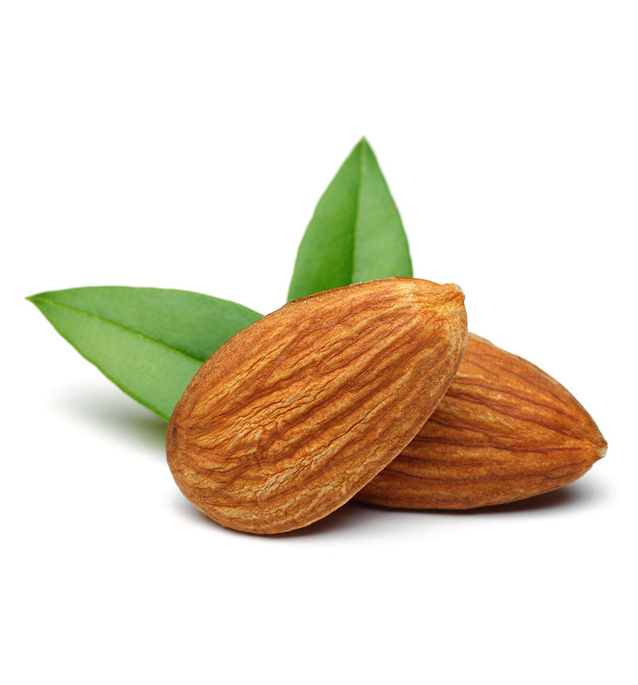 Sweet Almond Oil - New Zealand Candle Supplies