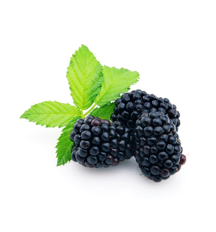 Black Raspberry Single Note Natural Fragrance Oil - New Zealand Candle Supplies