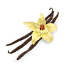 Classic Vanilla Natural Fragrance Oil - New Zealand Candle Supplies