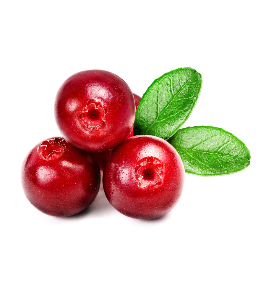 Cranberry Single Note Natural Fragrance Oil - New Zealand Candle Supplies