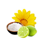 Crushed Lime and Sea Salt Fragrance Oil