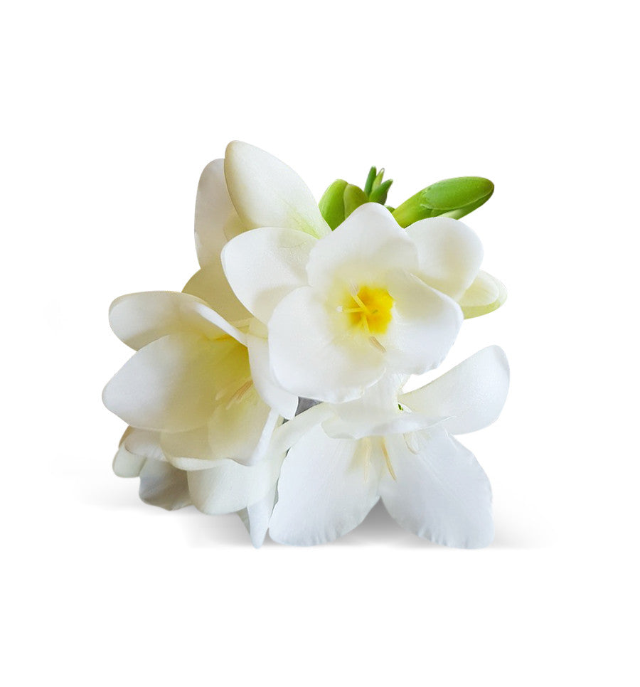 Freesia Blooms Fragrance Spring Flowers Make Soy Candles Shop New