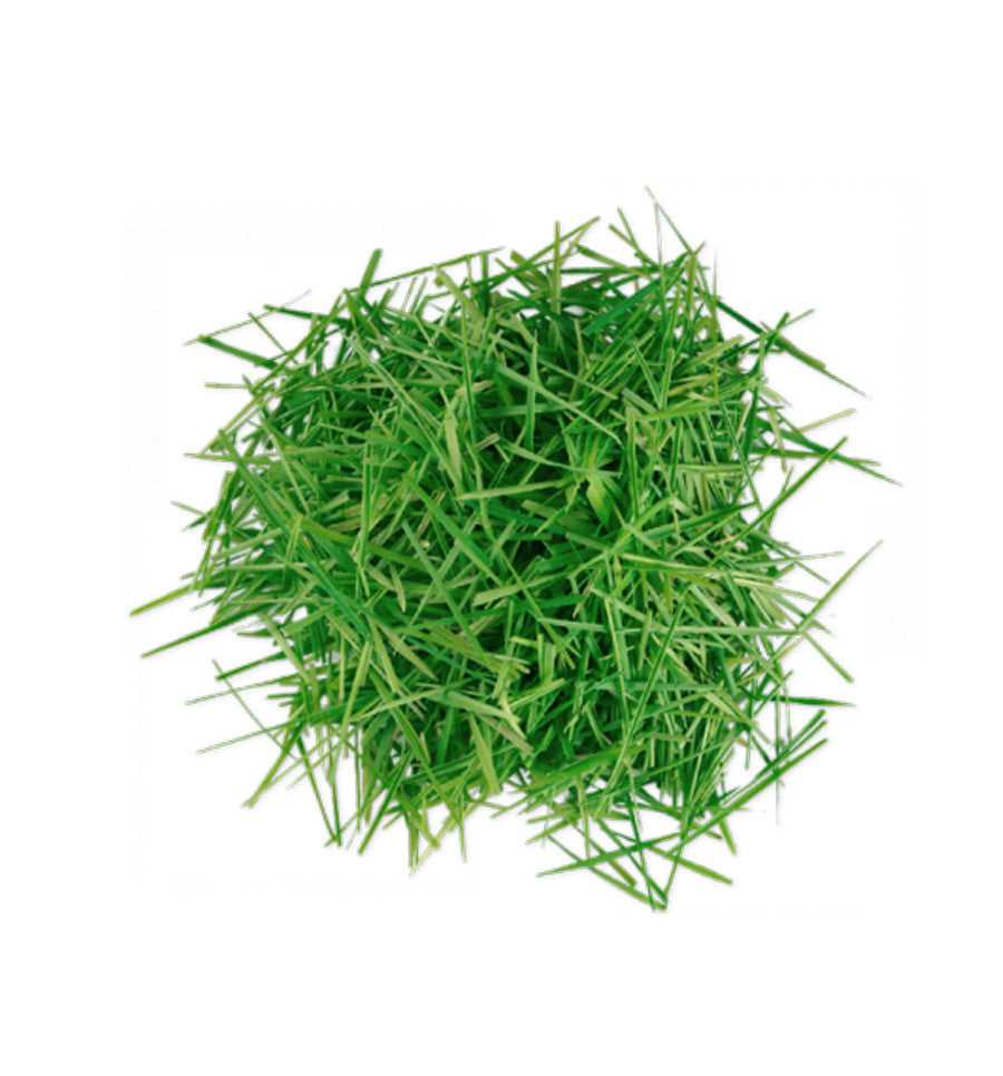 Fresh Grass Natural Fragrance Oil - New Zealand Candle Supplies