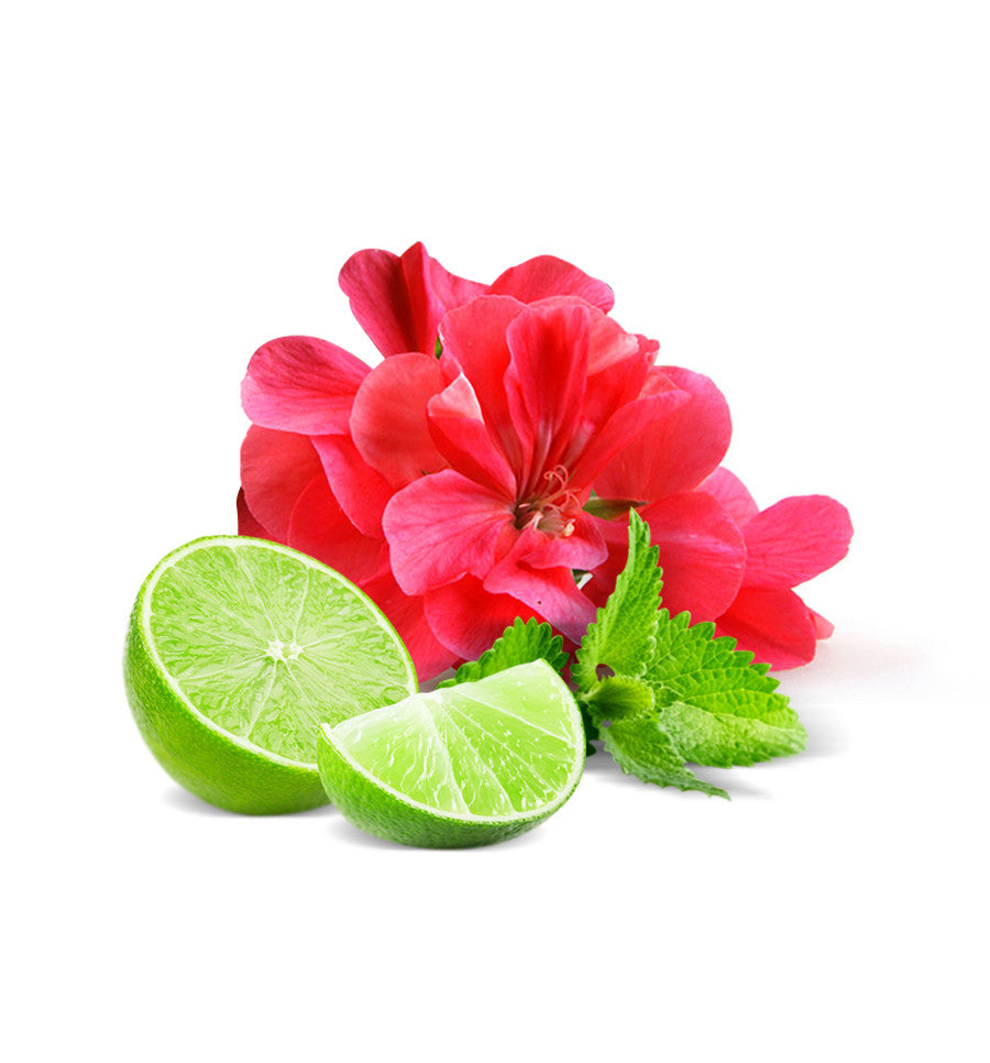 Fresh Mint & Lime Natural Fragrance Oil - New Zealand Candle Supplies