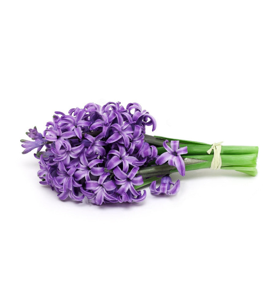 Hyacinth Single Note Fragrance Oil