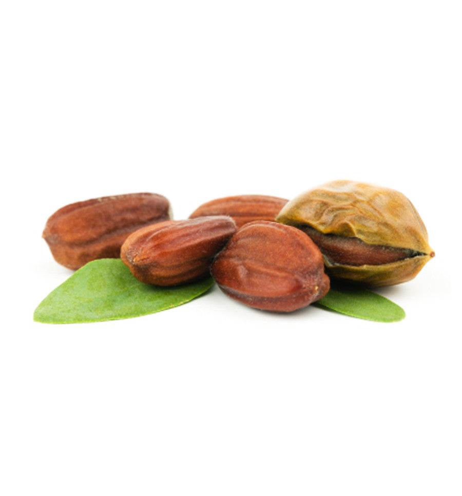 Jojoba Oil - New Zealand Candle Supplies