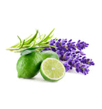 Lime Lavender & Ebony Fragrance Oil