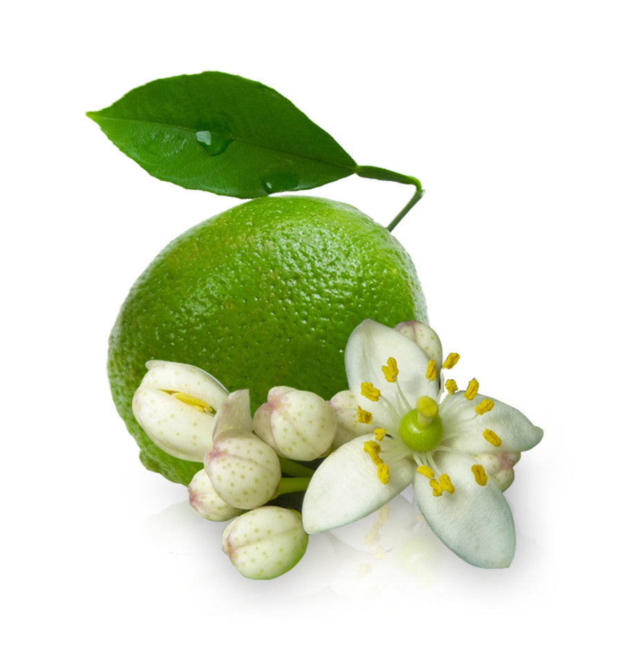Limeflower Essential Oil - New Zealand Candle Supplies